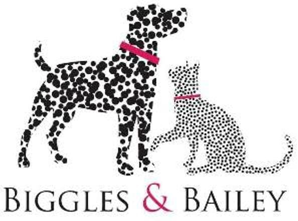 Biggles & Bailey