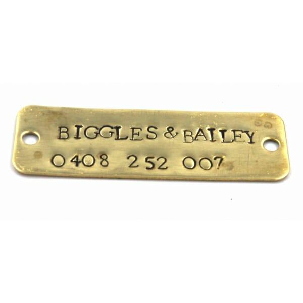 Mounted name tag for dog collar